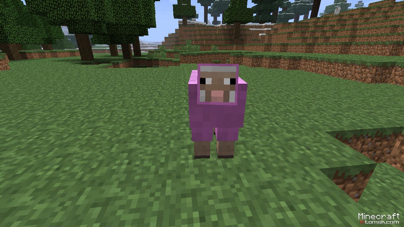 Как сделать в майнкрафте розовую овцу
