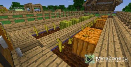 Полуавтоматический сбор тыкв и арбузов