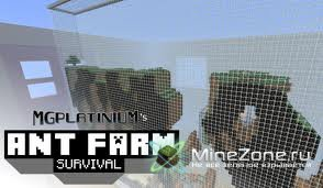 Ant Farm (Survinal)