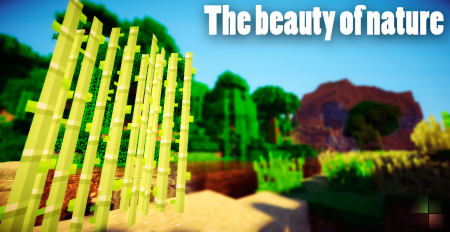 [FullHD] The beauty of nature