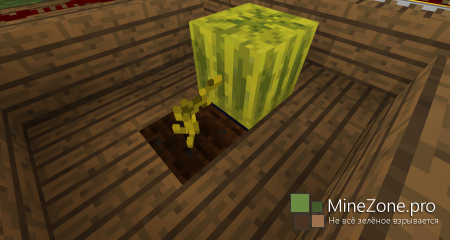 [1.6.4] 3DBlocksMod