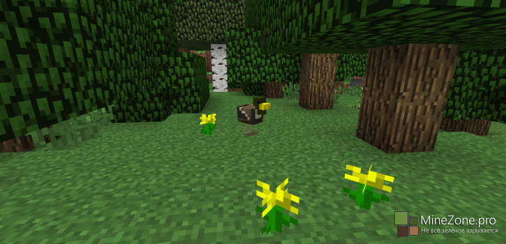 [1.7.2] [16x] Ducks For Chickens