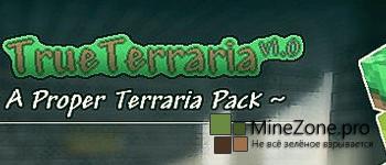 [1.8+][16x] True Terraria
