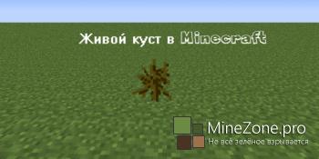 [Гайд] Секретный куст в Minecraft - получение