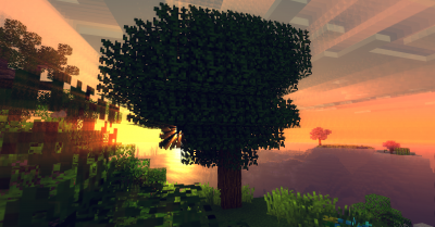 Ancient Trees Mod